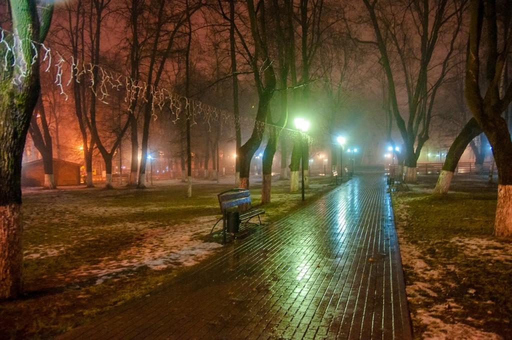 Ноябрьские туманы во Владимире 43