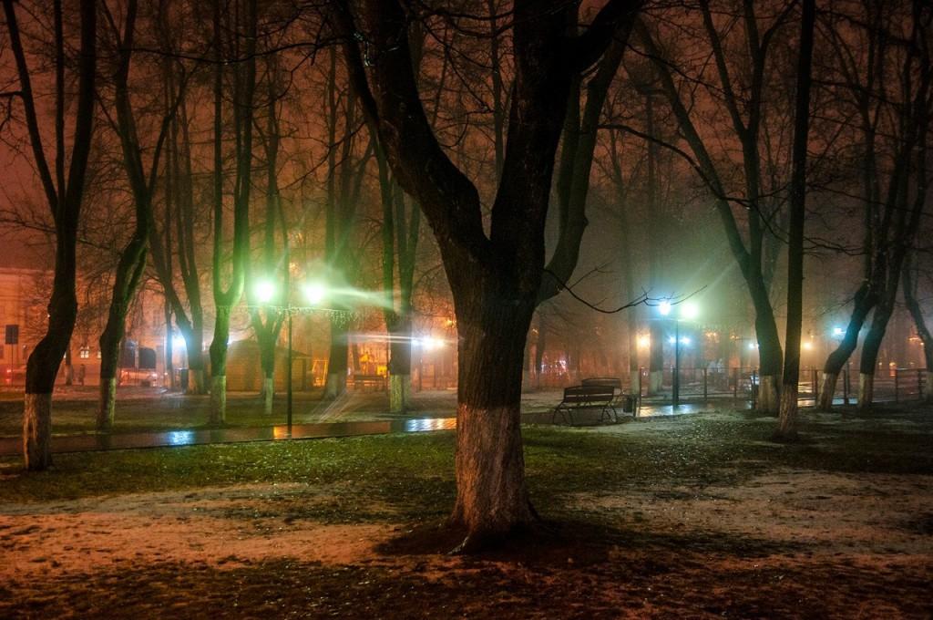 Ноябрьские туманы во Владимире 45