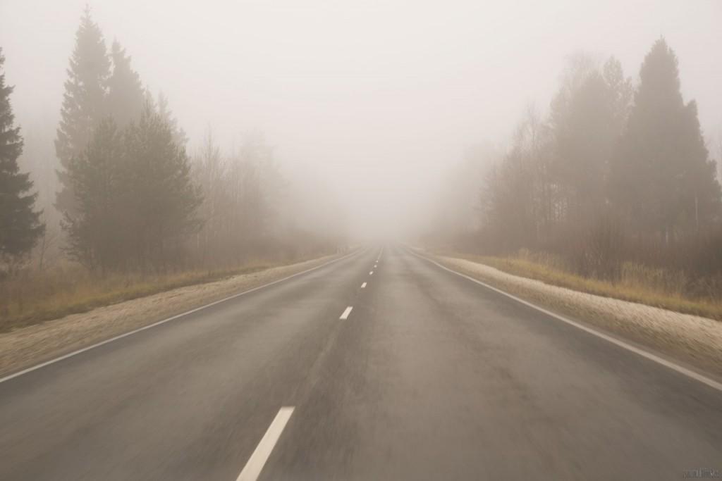 Область во власти тумана 02