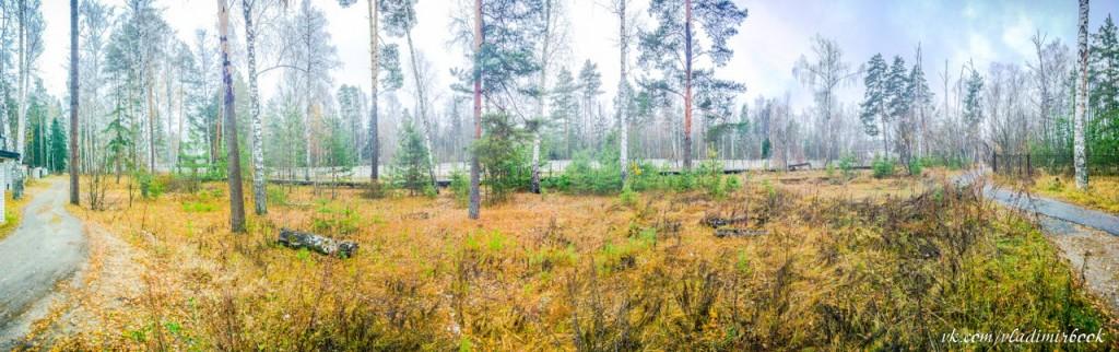 Осень на Вербовском, ноябрь