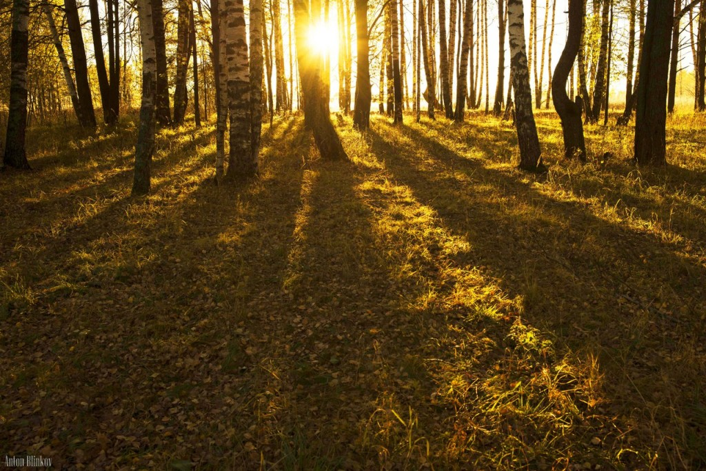 Осень творит чудеса
