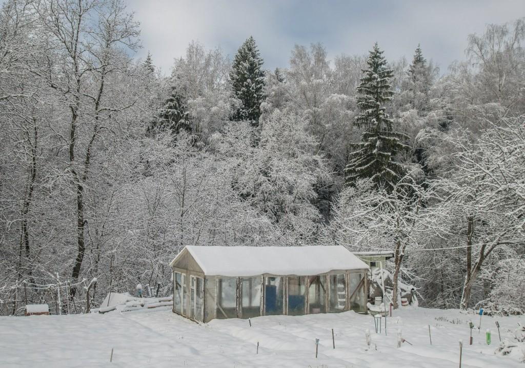 Поход во Владимирский лес 30
