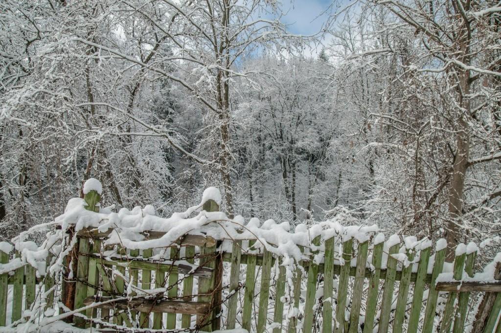 Поход во Владимирский лес 31