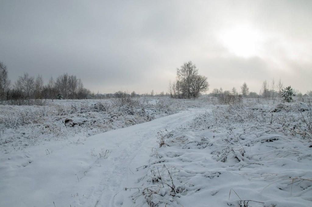 Поход во Владимирский лес 37