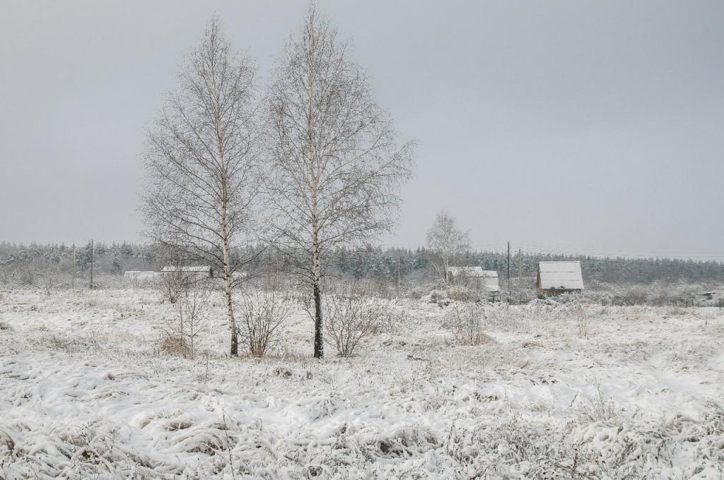 Поход во Владимирский лес 38