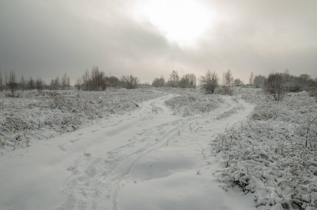 Поход во Владимирский лес 39