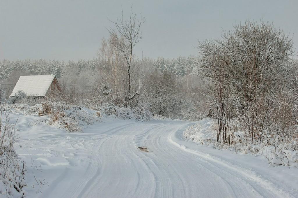 Поход во Владимирский лес 43