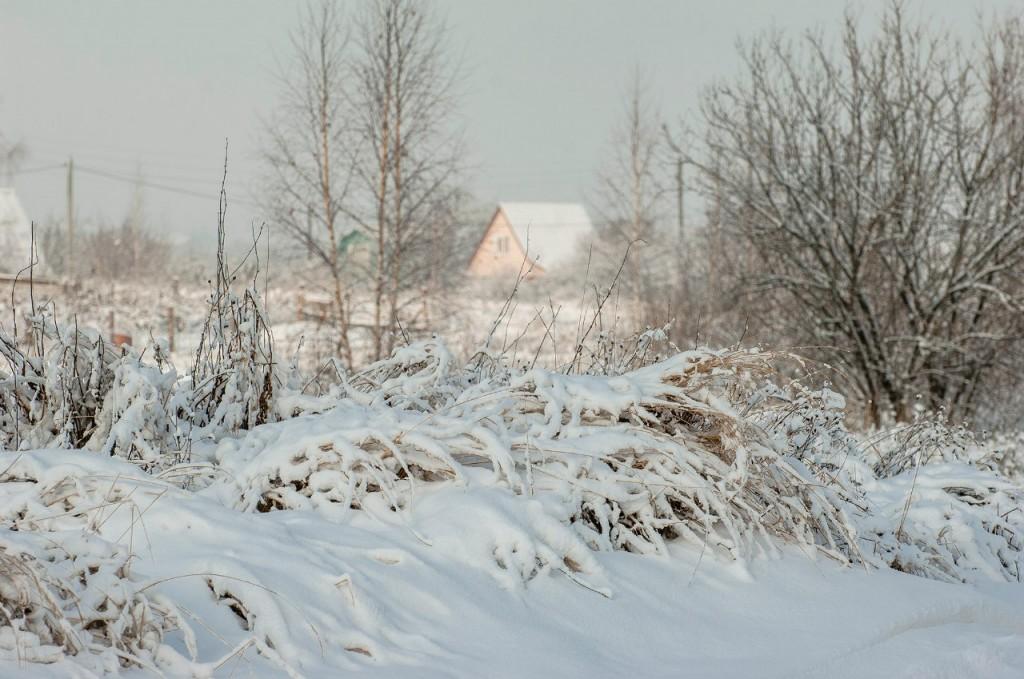 Поход во Владимирский лес 44