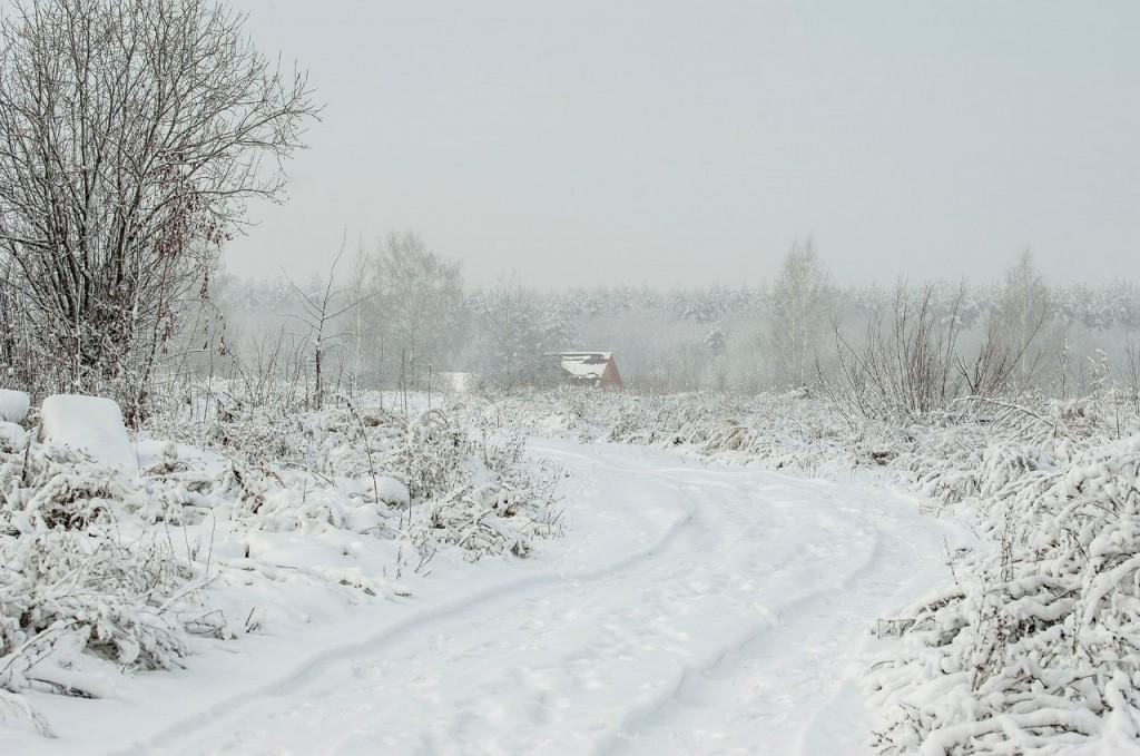 Поход во Владимирский лес 45