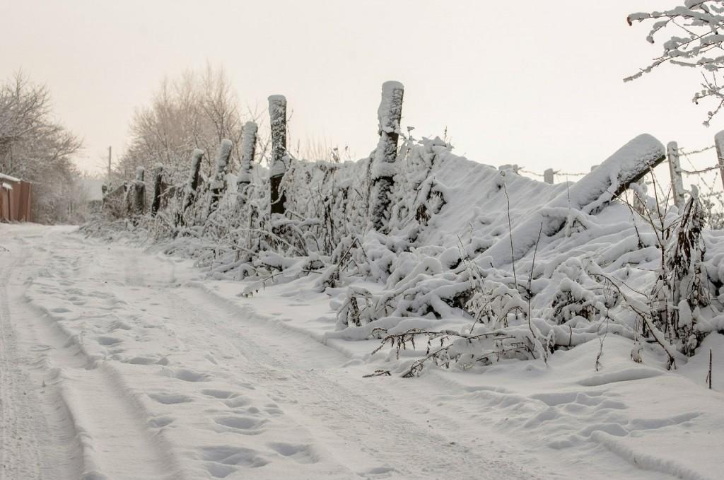 Поход во Владимирский лес 46