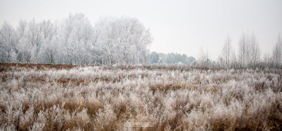 Прогулка по окрестностям Владимира в заснеженную пору 05
