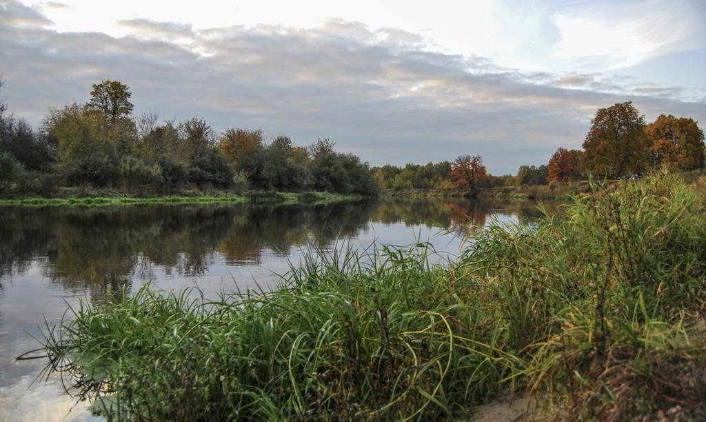 Река Клязьма 06