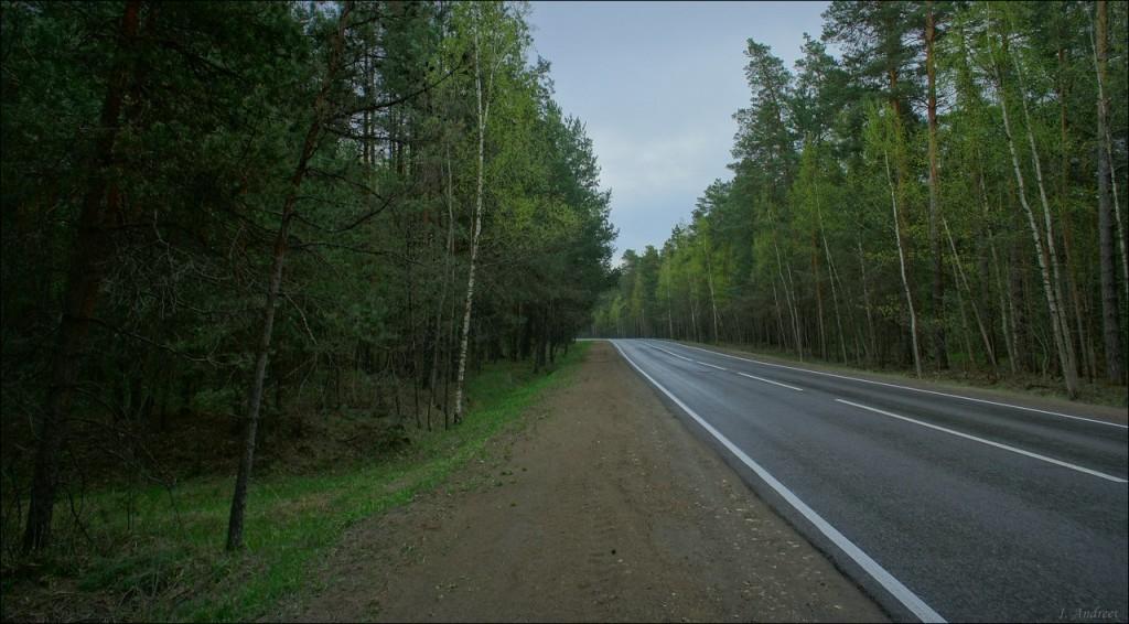 Судогодская дорога