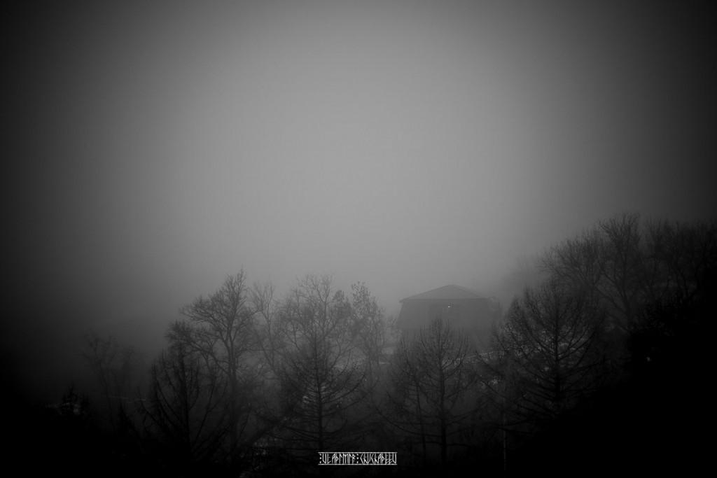Туманный ноябрь 2015 от Владимира Чучадеева 16