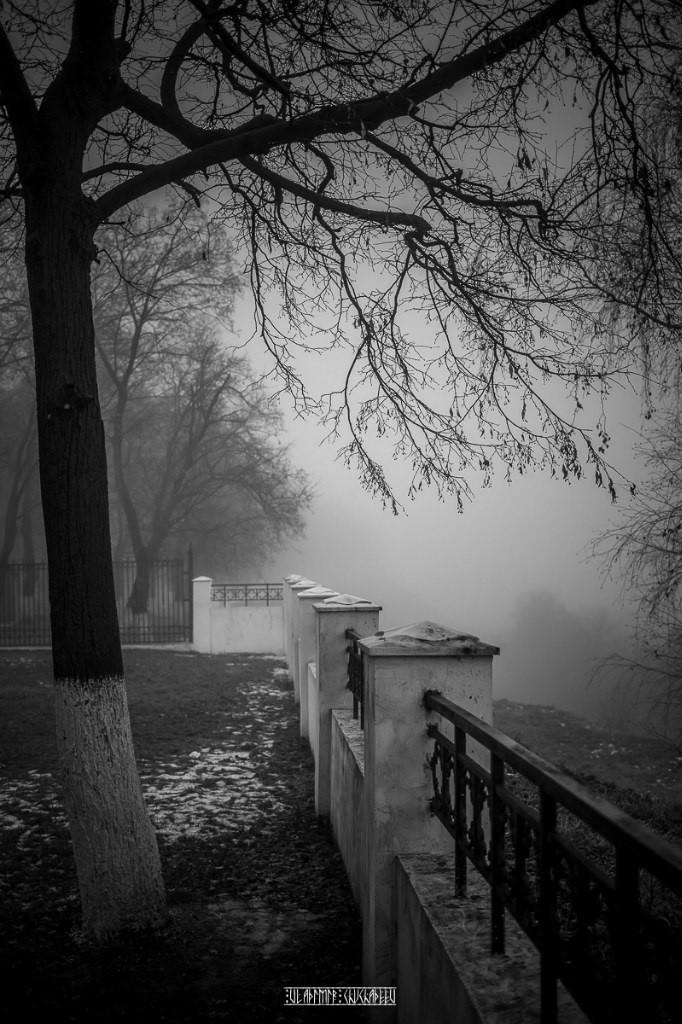 Туманный ноябрь 2015 от Владимира Чучадеева 18
