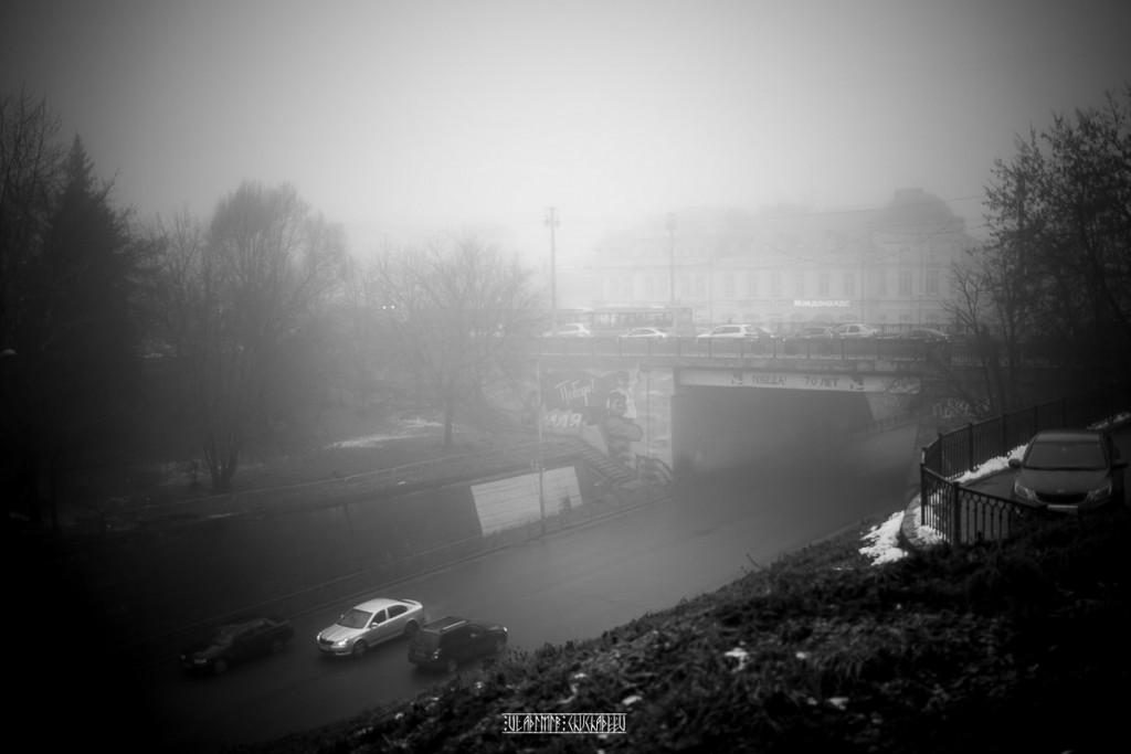 Туманный ноябрь 2015 от Владимира Чучадеева 19