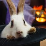 Хеллоуин 2015 в Муроме 31