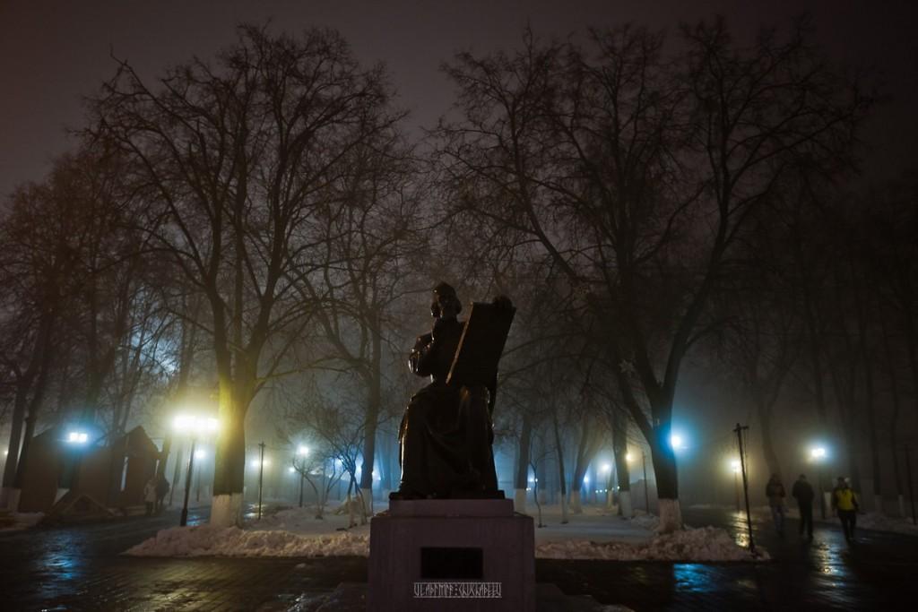 2015_11_20 Туман во Владимире 13