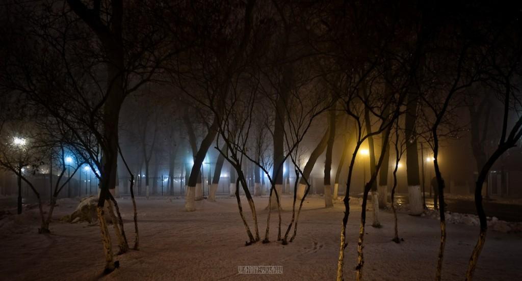 2015_11_20 Туман во Владимире 14