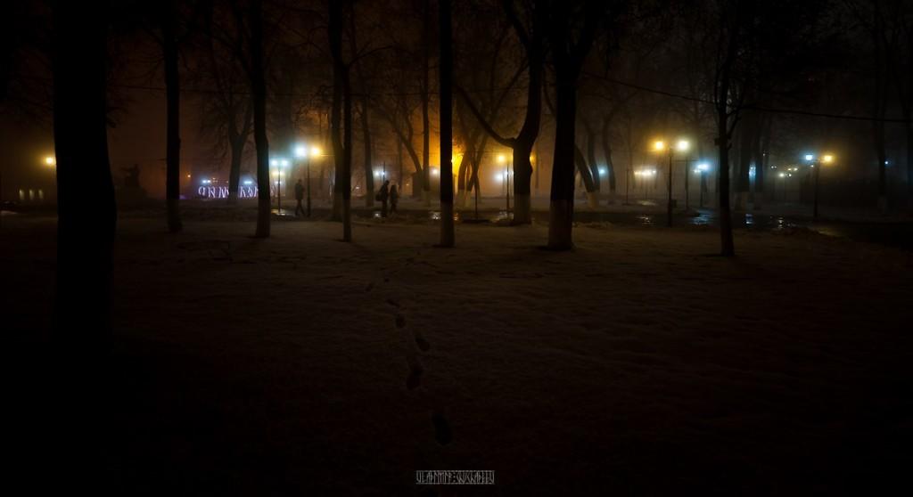 2015_11_20 Туман во Владимире 16