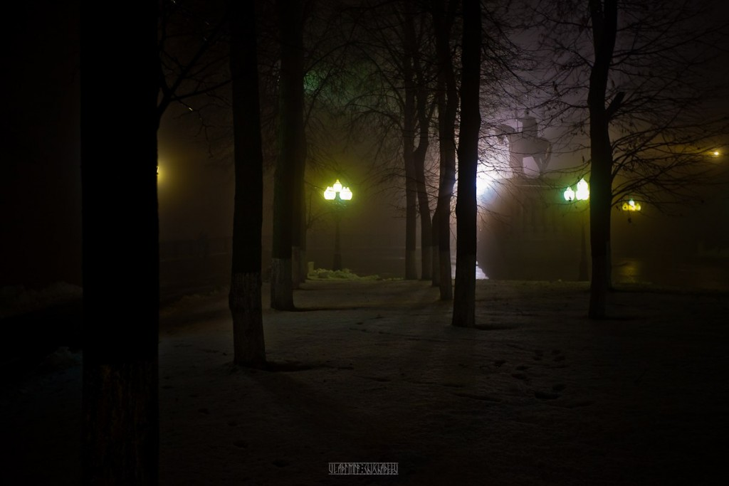 2015_11_20 Туман во Владимире 27
