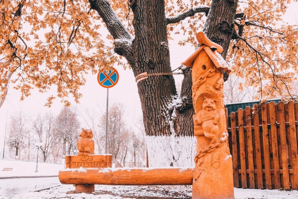 30.10.2015 Снежный октябрь во Владимире 09