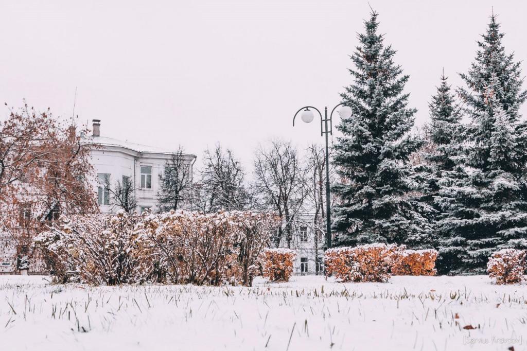 30.10.2015 Снежный октябрь во Владимире 10