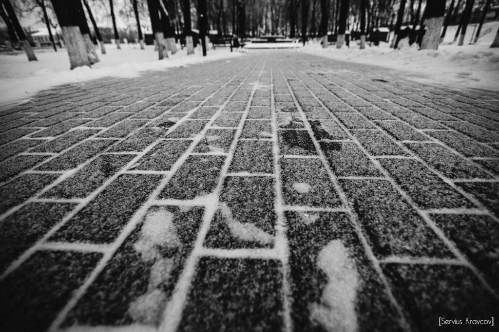 Владимир Снег 08