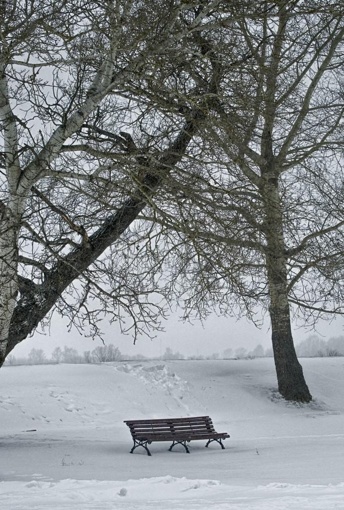 Вспоминание о зимнем Суздале 05