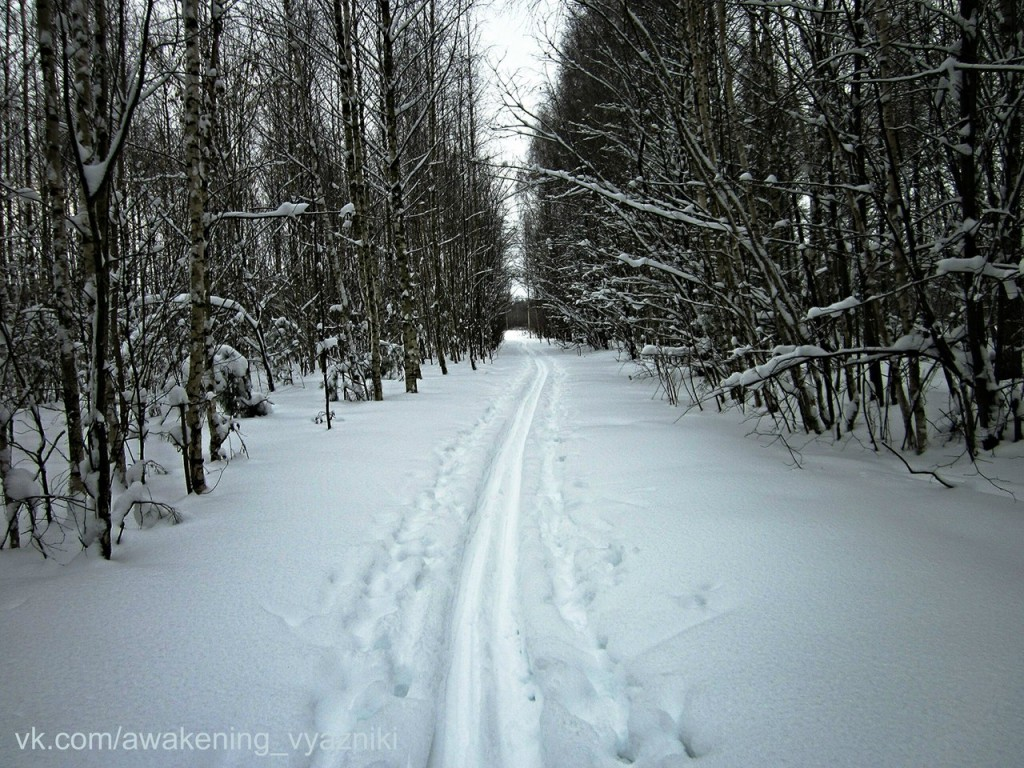 Зима в Вязниках