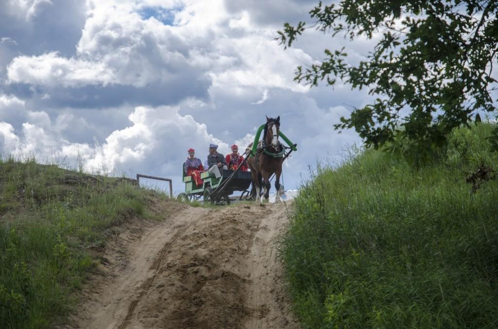 Летний фестиваль традиционной экипажной езды 04
