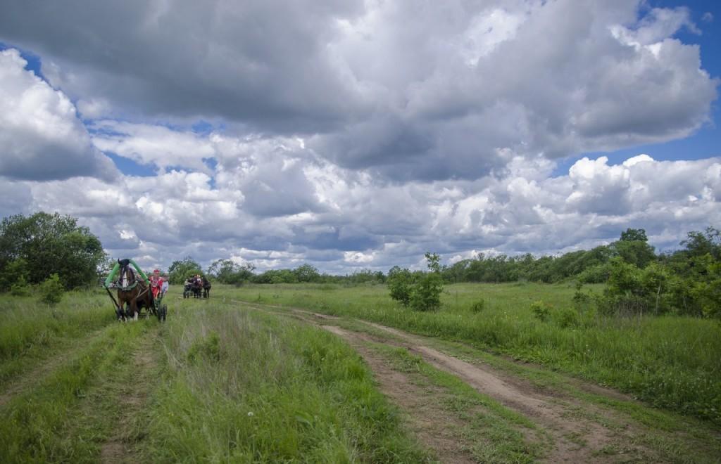 Летний фестиваль традиционной экипажной езды 05