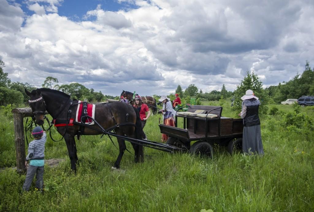 Летний фестиваль традиционной экипажной езды 07