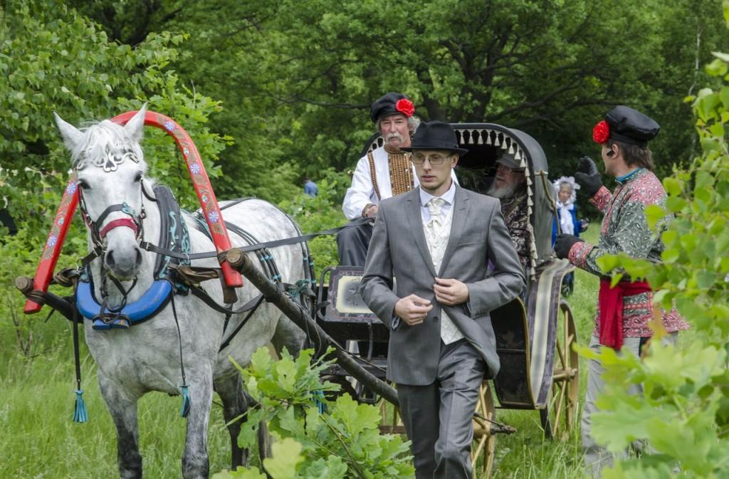 Летний фестиваль традиционной экипажной езды 09