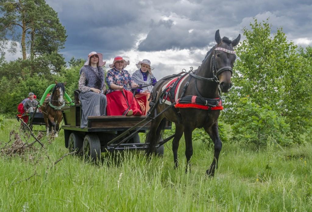 Летний фестиваль традиционной экипажной езды 10