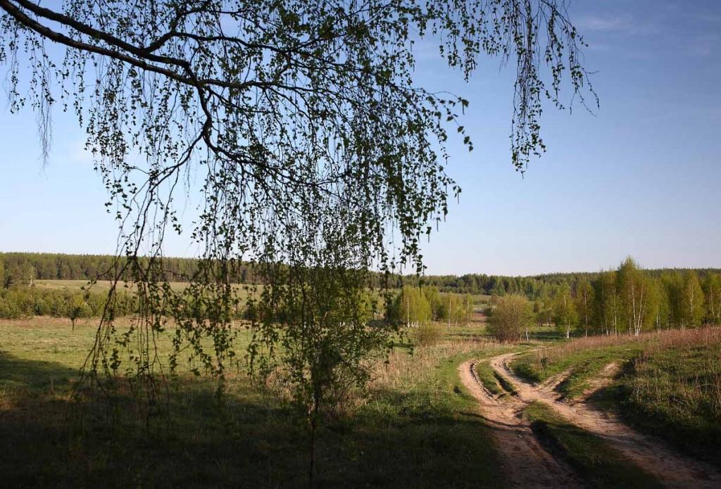 Майское Медынцево Ковровского района 02