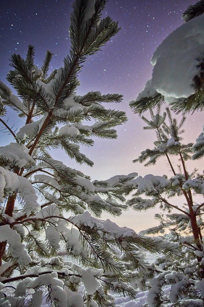 Морозной ночью на Клязьме 05