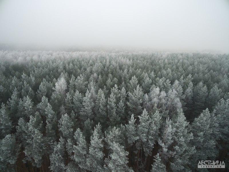 Морозный Владимир с высоты 04
