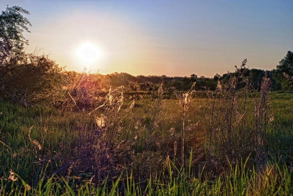 Муромские пейзажи. Река Ока и Илевна 04
