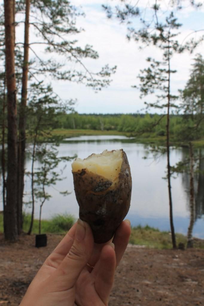 На природе близ Гусь-Хрустального 04