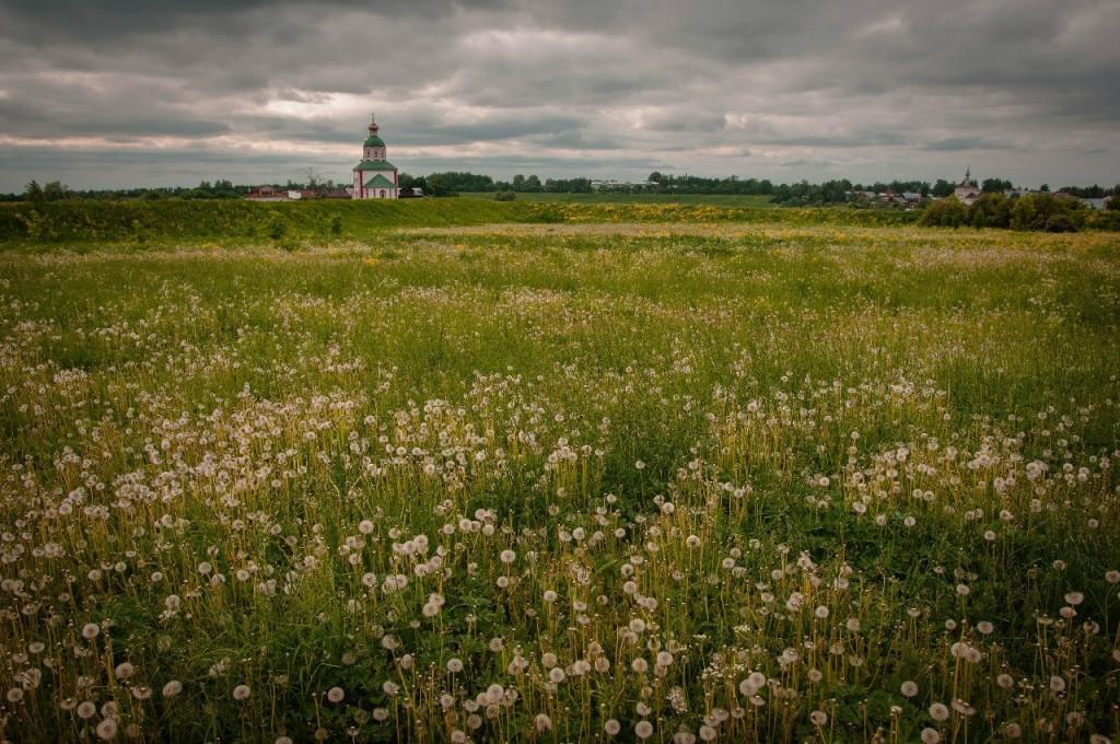 Невероятно красивый летний Суздаль 07