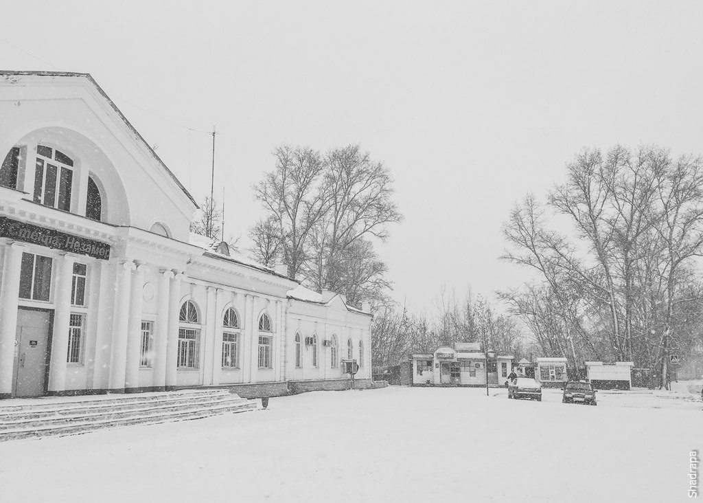 Неделя Гусь-Хрустального в группе Книга-журнал Владимирской области 02