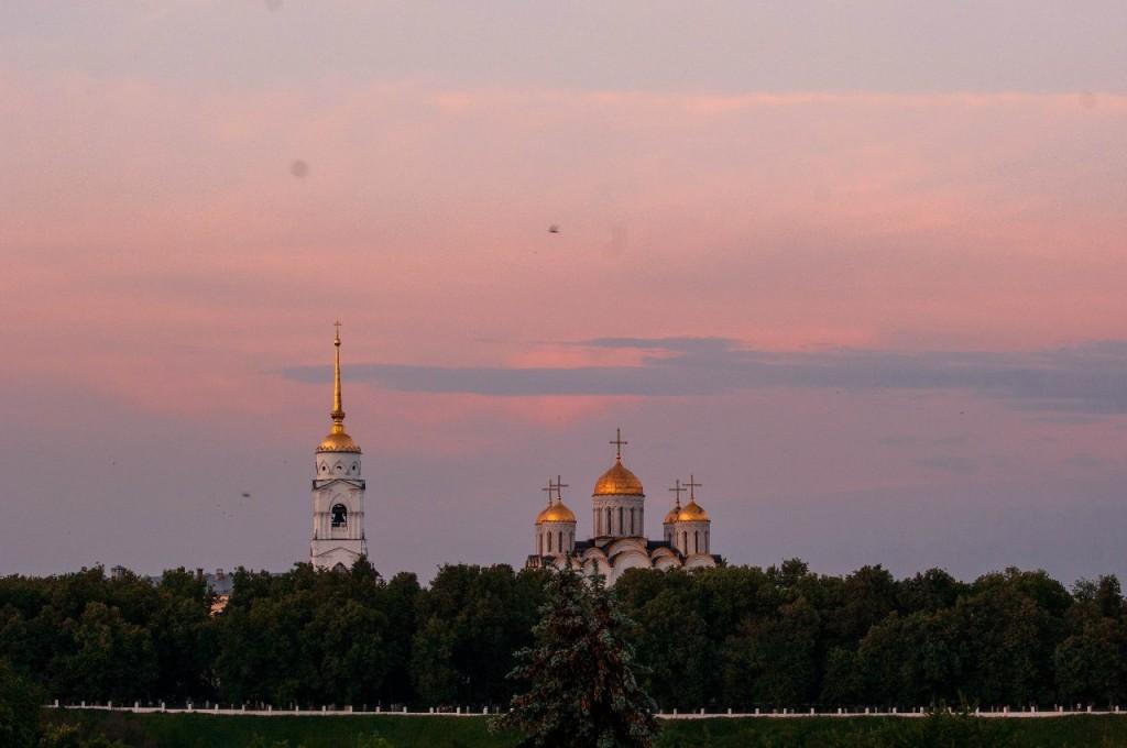Один из самых популярных видов Владимира