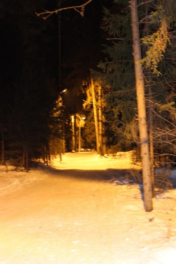 Освещенная лыжная трасса в Гусе-Хрустальном 02