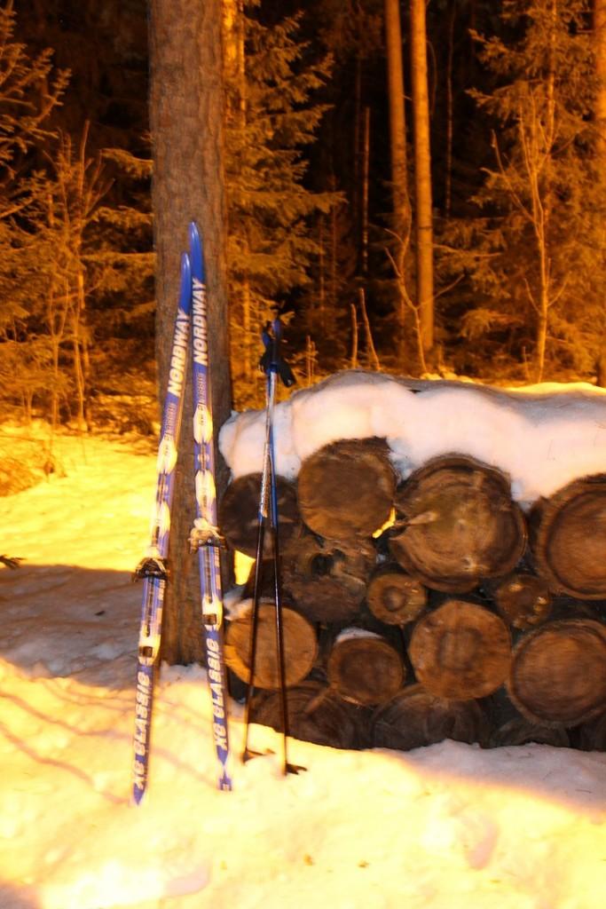 Освещенная лыжная трасса в Гусе-Хрустальном 03