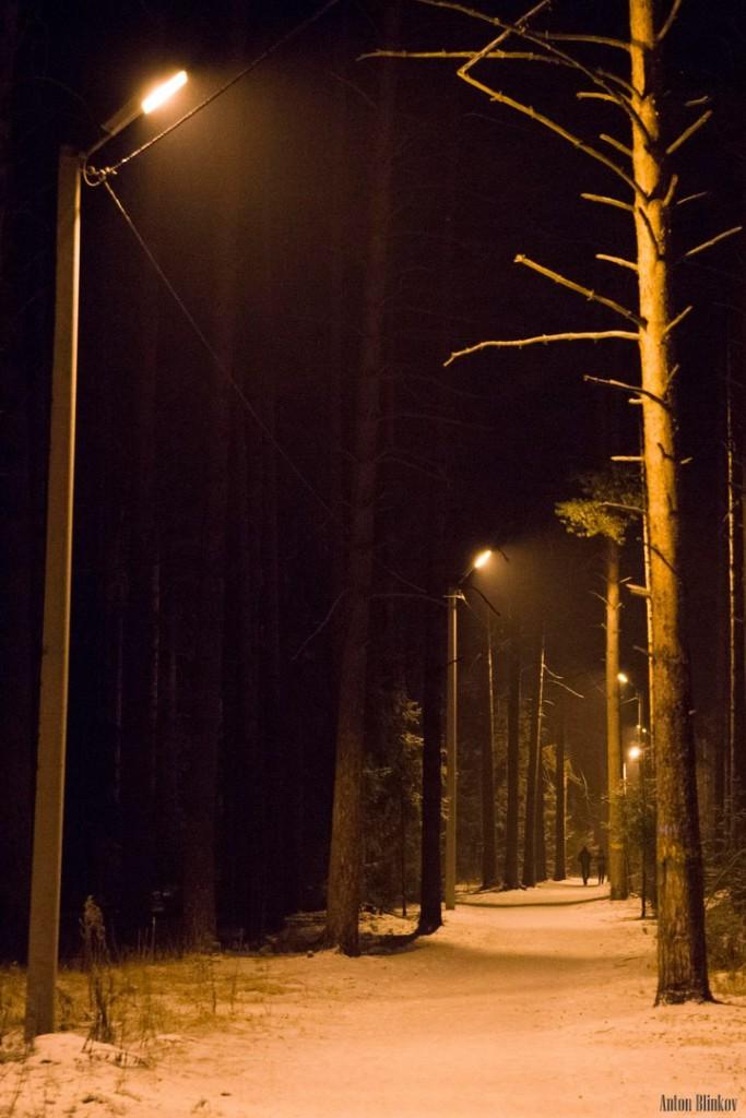Освещённая трасса для занятий спортом в Гусь-Хрустальном 01