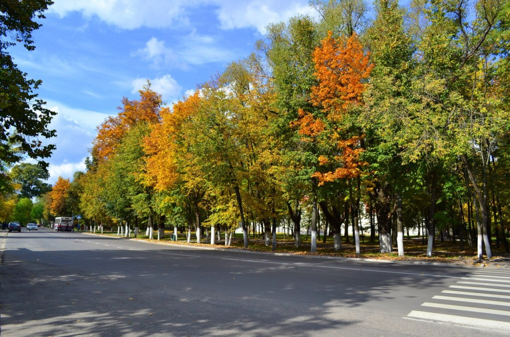 Осень в Гусь-Хрустальном