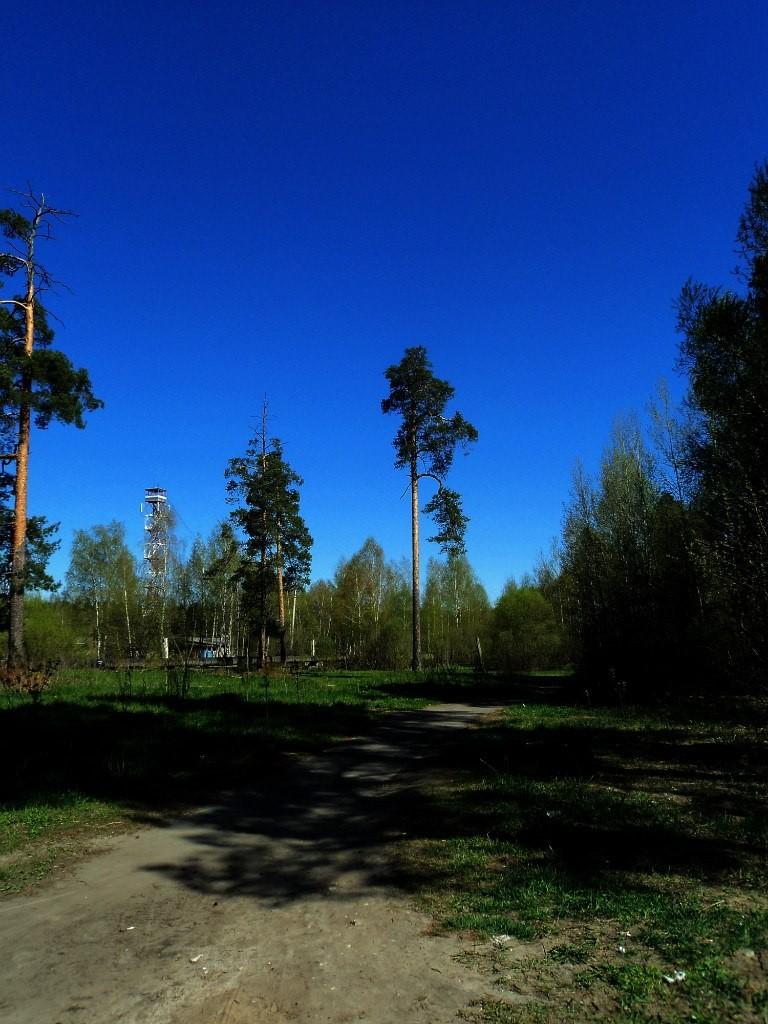 Парк Сказка, г. Гусь-Хрустальный 07.05.2015. Автор - Aigul Olvya 58