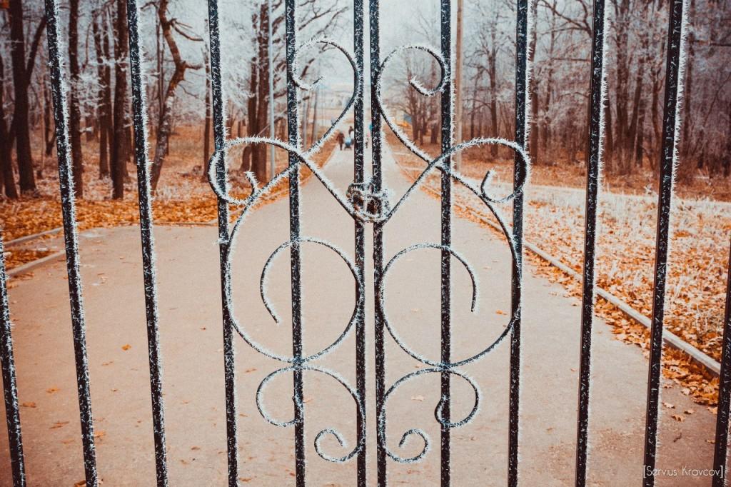 Пейзажи Владимира. Осенний иней 07