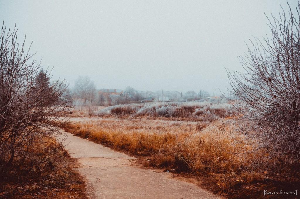 Пейзажи Владимира. Осенний иней 08